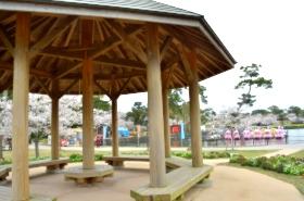 ときわ公園の桜サムネ
