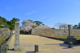 萩城跡指月公園の桜サムネ