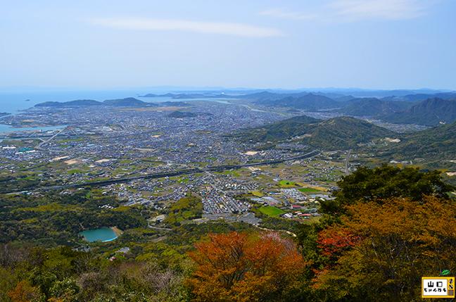 大平山の夜景_02
