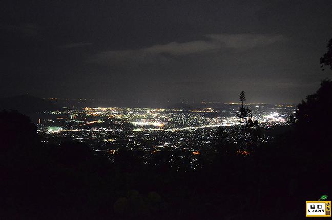 大平山の夜景_06