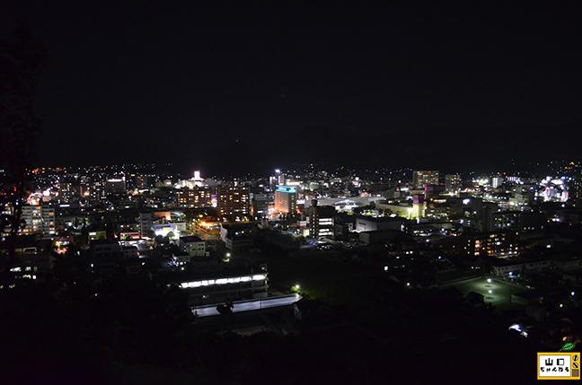 桑山公園の夜景_04