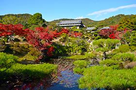 毛利氏庭園の紅葉サムネ