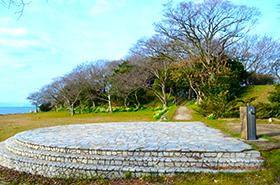 縄地ケ鼻公園の水仙サムネ