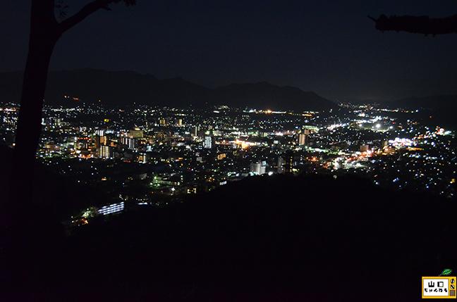 鴻の峯の夜景_05