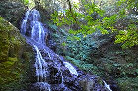 秋芳白糸の滝のサムネ