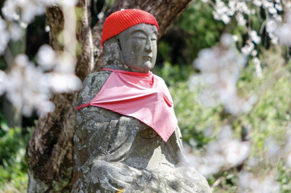 南明寺の桜