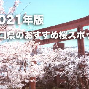 【2021年版】コロナ禍でも安心!人が少ない山口県のお花見・桜スポットを紹介!