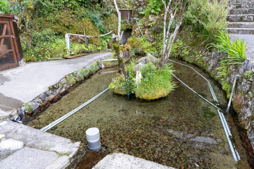半田弁天の池