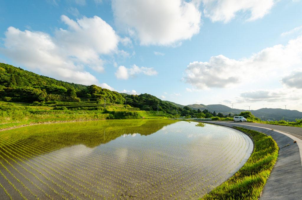 深田ため池