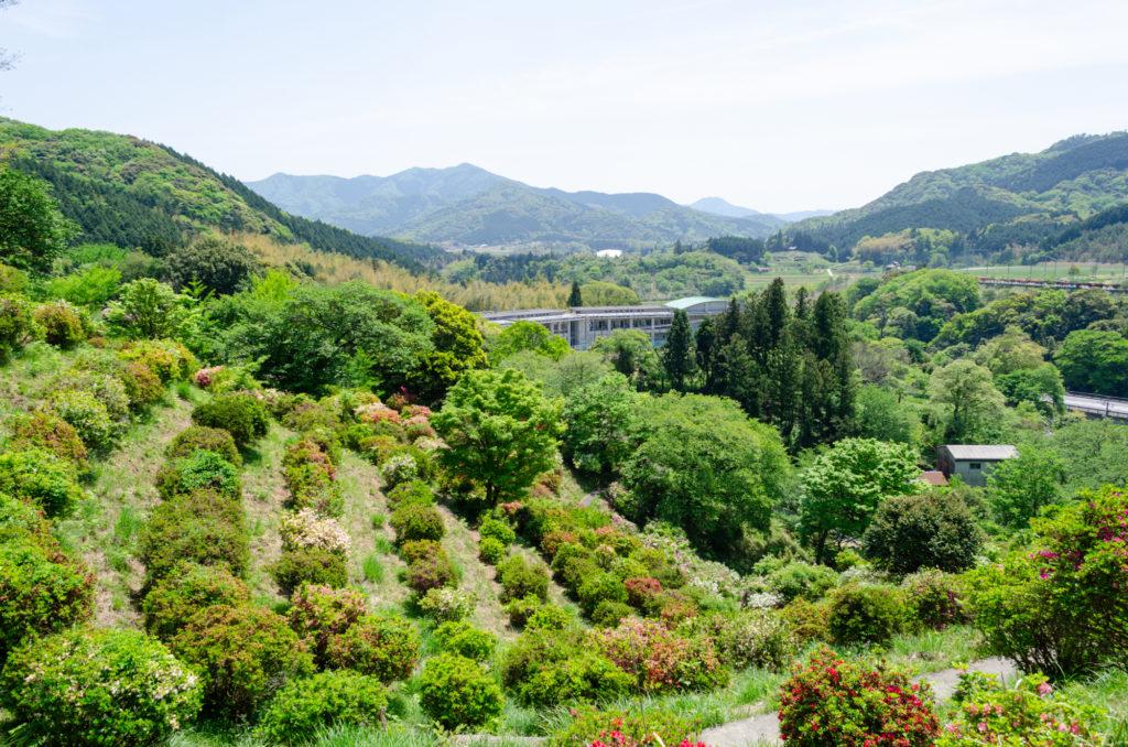 熊野山公園の山頂