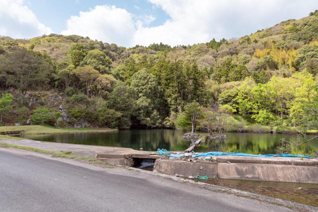 白水の池の全体写真