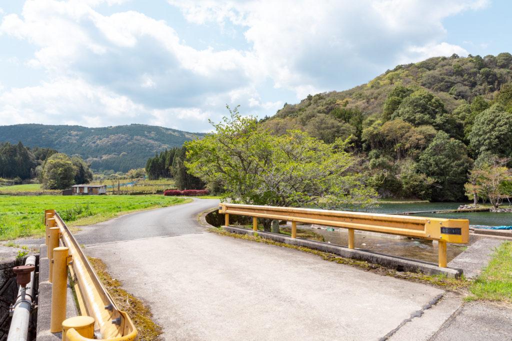 白水の池の道