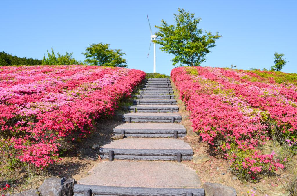 菅無田公園とプロペラ