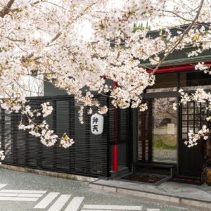 【桜を見ながら焼肉が食べれる】防府市和牛弁天さん。