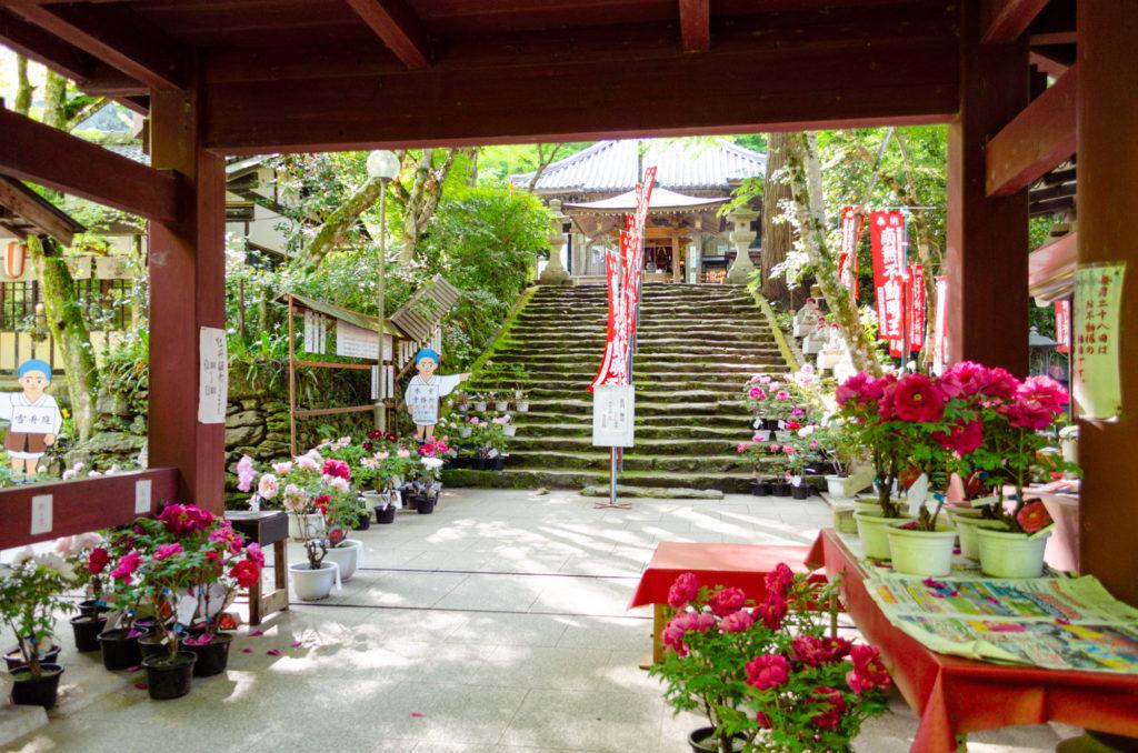 龍蔵寺の楼門