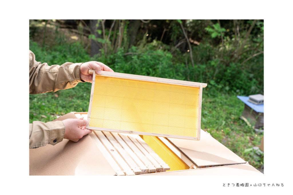 ときつ養蜂園で使用する巣礎