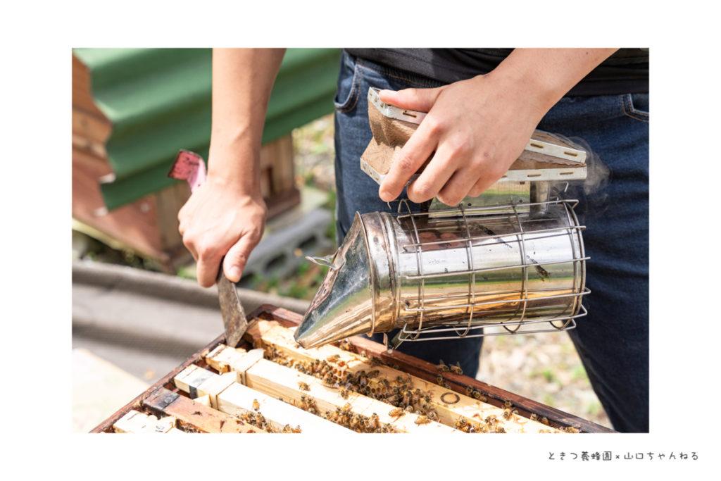 ときつ養蜂園の燻煙器