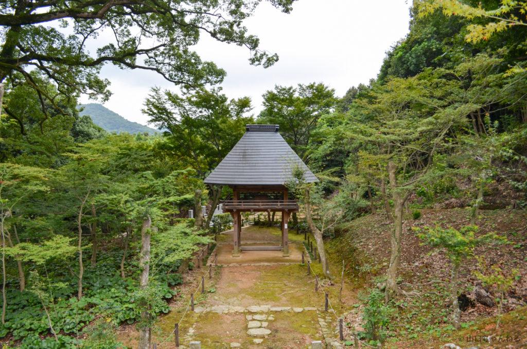 両足寺の新緑