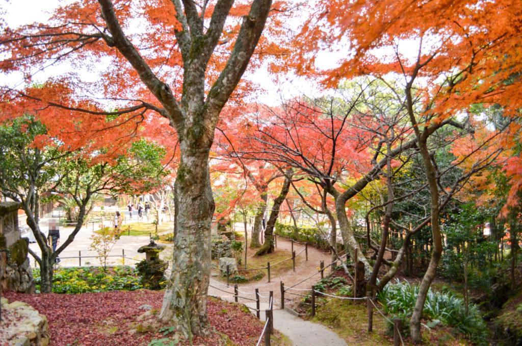 両足寺の庭