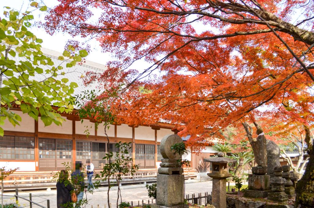 両足寺本堂周辺の紅葉