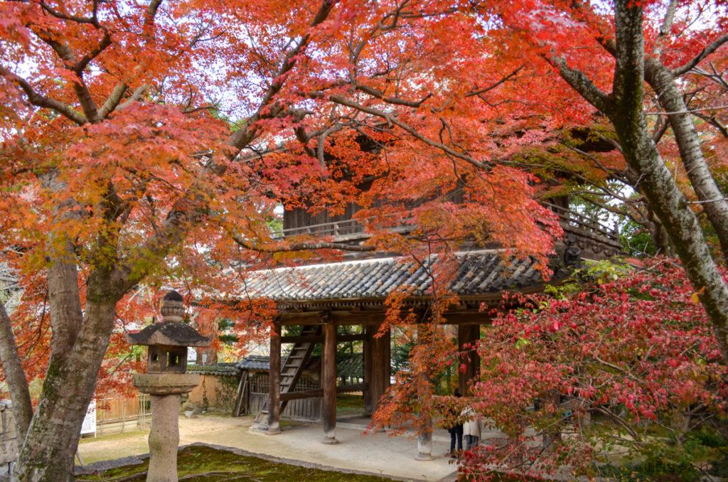 功山寺の紅葉