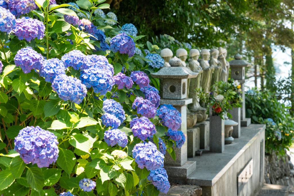 向徳寺の六地蔵